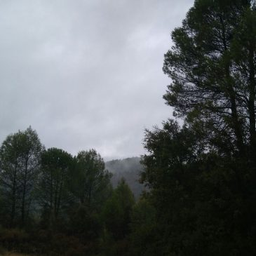 Llueve en Riópar